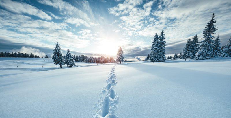 Téli elvonulás